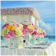 השכרת ציוד לחתונה